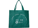 China Life Non Woven Fabric Promotional Bag
